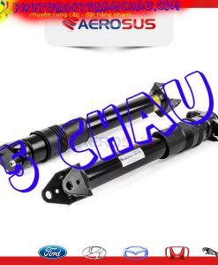 A2513202131-2513202131-giam-soc-Mercedes-R-W251