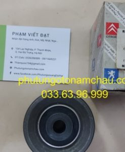 0830 42 Bi Tỳ Cam Peugoet 407 (3)